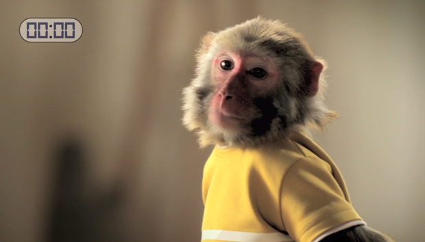 「春节是众多品牌的必争之地,几乎所有的广告打的都是感情牌。我们在想:春节广告是不是也能做的不一样?比如可以轻松有趣点。」 李奥贝纳上海创意部主管郝崎说:「我们想到了『猴急』的概念,整个团队比猴子都兴奋。」   猴急,百度百科上写:形容人急欲做某事或焦急的样子。所以用猴急来表现等待一碗泡面的焦躁心情,显然比直接宣传面有多好汤有多鲜有意思很多。   「其实小朋友或者是动物是最难拍的,因为他们从来不会乖乖听话,而你又无法跟他们沟通。我们特意选了有表演经验的猴子,哄着它来做一些简单的小动作。最后的成片里这位主